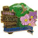【2段 ピンズ】 日光白根山 (奥白根山) 日本百名山 ピンバッジ エイコー コレクションケース入り