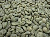 コーヒー生豆グァテマラ SHB 1kg【MMC珈琲】【10P01Sep13】