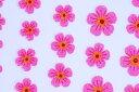 REAL FLOWER【フラワーネイルシール】(2)ピンク 41枚入
