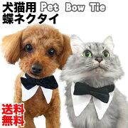 ペット用 蝶ネクタイ 送料無料 猫 犬 コスプレ コスチューム 仮装 付け襟 被り物 紳士 ファッション 首輪 サイズ調整可能 4サイズ