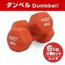 【送料無料】ダンベル6.0kg 2個セットエクササイズフ