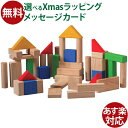 木のおもちゃ Plantoys 積み木 50ブロック お誕生日 2歳:男 女 おうち時間 クリスマス プレゼント 子供