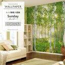 ドイツ製インポート壁紙 【8NW-519】Sunday「サンデー」 《即納可》[輸入壁紙 デザイン