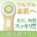 洗顔ブラシ 電動 ブラシ 美容家電 美容器具 美容機器 洗顔ブラシ プレゼント 贈り物 送料無料