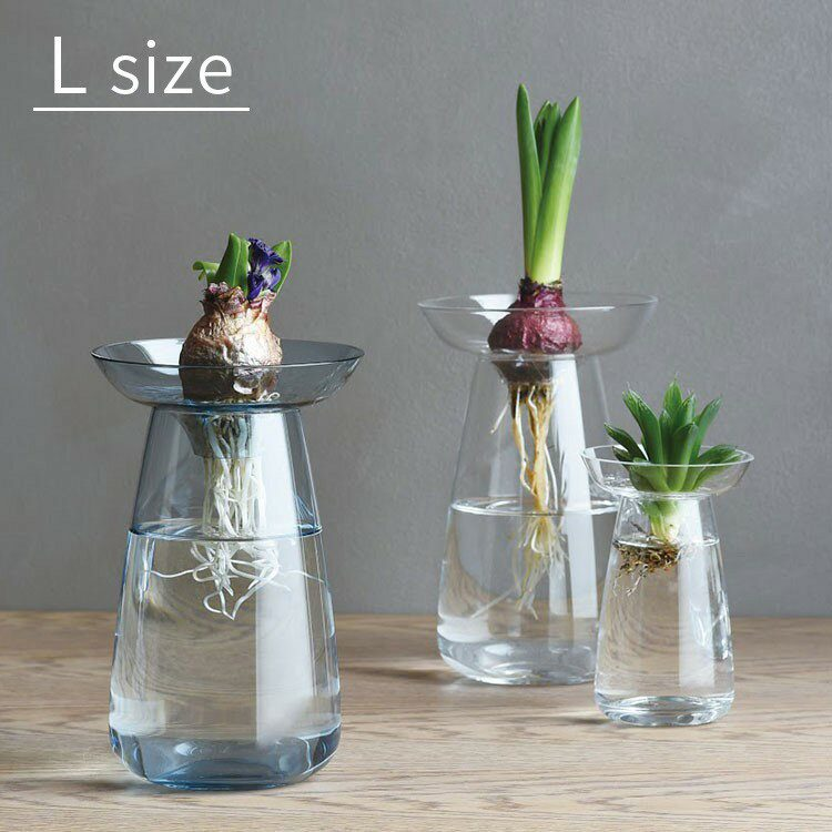 KINTOキントーAQUAアクアカルチャーベースLフラワーベース花器花瓶球根種シンプルガラスインテリ