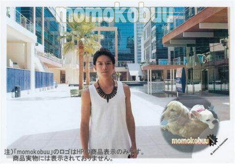 タッキー&翼 公式生写真 (滝沢秀明)TTK00021