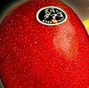 完熟マンゴー【太陽のタマゴ】 赤秀 3L(450g以上×1個) (糖度15度以上) JA宮崎