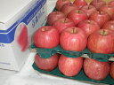 【お歳暮2020フルーツ】サンふじ みつ入り 10kg(28~32個) ふるさと物産品