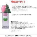 【おもしろ用品】だんごティー1本 桜餅ボール1球セット TB1053 【ゴルフ】