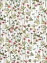 LIBERTYリバティプリントJosephine's Garden(ジョセフィンズガーデン)国産エターナル柄3633181-CE ピンク