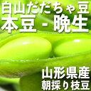 庄内 白山産 だだちゃ豆 茶豆 本豆 晩生 2kg 【2018年冷凍】(500g野菜鮮度保持パック×4袋)