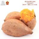 鹿児島県種子島産 冷凍安納芋 焼き芋 5kg (糖度: 30-40度)