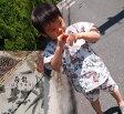 日本製夏の甚平スタイル『甚平・男の子』モンキーパンツ(80cm 90cm 100cm 110cm)ご出産祝いに