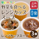 初回限定 ! 野菜 を食べる 高級 カップ スープ お試し 3種×1袋 セット★ 1000円ポッキ