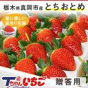 【クーポンあり】苺 いちご ホール詰め 600g x 1箱 ...