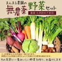 無農薬野菜セット(8〜10種類) 送料無料...