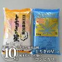 全国お取り寄せグルメ栃木食品全体No.5