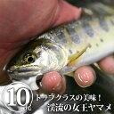 全国お取り寄せグルメ栃木食品全体No.22