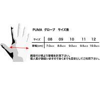PUMAレーシンググローブPODIO(ポディオ)ホワイト外縫いシリコンラバータイプFIA公認040839-04