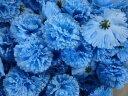 造花 カーネーション 花のみ 9cm 50個 (ブルー)