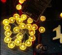デコレーションライト LED レモンの輪切り型 オーナメント 20連 電池式