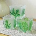 キャンドルホルダー ミニフラワーポット すりガラス風 植物のイラスト 3個セット (南国風リーフ)