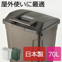 日本製 SP ハンドル付ダストボックス 70L ゴミ箱 ごみ箱 ダストボックス ふた付き おしゃれ 分別 屋外 70L可 70リットル可 スリム キッチン インテリア雑貨 北欧 リビング くずかご かわいい デザイン 見えない 日本製ごみばこ 蓋付き フタ付き アスベル
