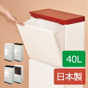 分別ダストボックス ペダル2段ワイド 40L ゴミ箱 ごみ箱 ダストボックス ふた付き おしゃれ 分別 45L可 45リットル可 スリム ペダル キッチン インテリア雑貨 北欧 リビング 縦型 かわいい デザイン 生ごみ 収納 2分別 スクエア 2段 日本製 アスベル