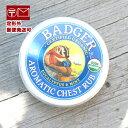 BADGER(バジャー) /バジャー バーム/アロマ バーム/送料無料/風邪など鼻がムズムズするときにすっきりさせてくれるバームバジャー バーム アロマティック チェストラブバーム (AROMATHIC CHEST BALM)21g;