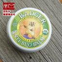 バジャー バーム オーガニックバーム プロテクトバーム (虫刺され防止に) 21g badger 虫除け【定形外郵便送料無料】;05P03Dec16