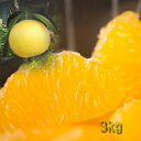 【送料無料】訳あり!はっさく 減農薬!和歌山県かつらぎ町産 八朔 3kg こぶり キズ 型落ち 小ぶり 家庭用 ハッサク;05P03Dec16