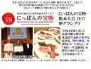 無農薬生姜 500g 箱なし 熊本県産 国産生姜 しょうが ショウガ 根生姜