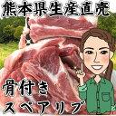 熊本県生産直売!骨付きスペアリブ 500g(250g×2) モンヴェールポーク 焼肉 煮込み バーベ...