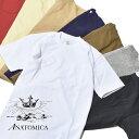 【20%OFFクーポン対象】アナトミカ ポケT ポケTEE 半袖 Tシャツ 白T 無地 カットソー メンズ レディース ANATOMICA MADE IN JAPAN 日本製