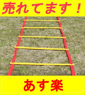 フィジカルエクサネス トレーニングラダー シリーズ サッカー フットサル トレーニング