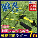 SPORTS科学 【動画マニュアル付】連結可能 ラダー トレーニング 7m プレート13枚 瞬速