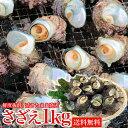 サザエ BBQ用 1kg(8〜13個) さざえ つぼ焼き 中サイズ 海鮮 魚介 バーベキュー / 送料無料 同梱不可 冷蔵配送 バーベキュー BBQ お中元 お取り寄せグルメ