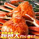<<創業52周年大感謝祭>>送料無料 【超特大】特選 姿ずわい蟹計4.5kg 5〜6尾詰め合わせ《※冷凍便》