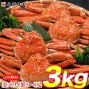 早割 姿ずわいがに 3kg 5〜6尾 蟹 カニ かに ずわいがに ズワイガニ カニミソ かにみそ 蟹味噌 業務用 送料無...