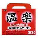 【◆】【●】【ケース販売】温楽 貼るタイプ レギュラー 30個入 【カイロ】〔ケース入数 8〕