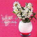 ほのかな甘い香り&超丈夫で初心者さんにピッタリ♪『デンドロビウム・エンジェルベイビー 'グリーン愛'陶器鉢仕立て』グリーンのリップがかわいい小さな白い花が咲き乱れます。胡蝶蘭ギフトに飽きた方に ご自宅、お誕生日にどうぞ♪ 陶器鉢花