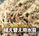 栽培資材『洋ラン 栽培プロ用 水苔』 ミズコケ (sphagnum moss)