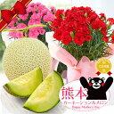\選べるメロン!/母の日ギフト 2019 フルーツ王国熊本から『国産生花!復興カーネー