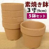 洋蘭栽培プロ用 3号素焼き鉢5鉢セット