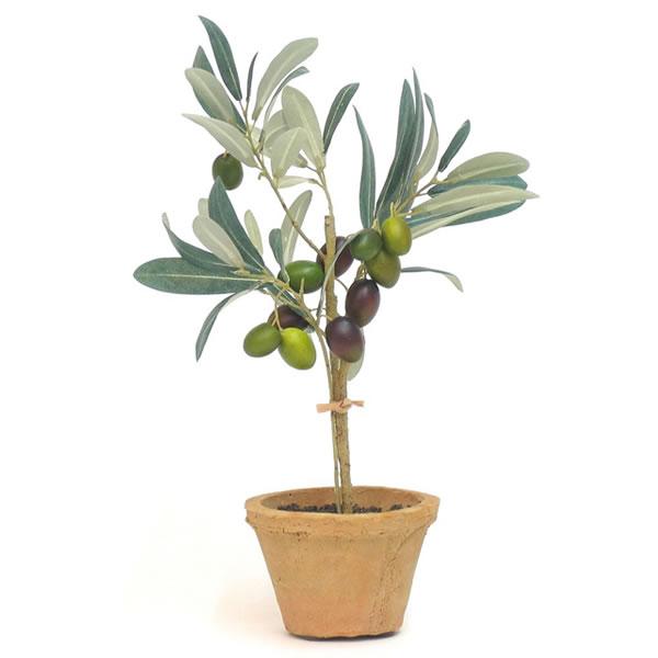 フェイクグリーン テラコッタポット オリーブ PRGR-0550 フェイクグリーン/インテリアグリーン/イミテーショングリーン/造花/テラコッタ/鉢付き