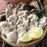 【送料無料】岡山虫明産 曙牡蠣 かきむき身(生食用) 約500g×1袋今年も多くの人がこの味に驚き感動されるはず!牡蠣は鮮度が一番です!当日むきたての新鮮な牡蠣をお届けします。【smtb-kd】【マラソンP10】