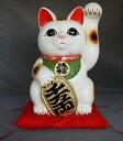 8号招き猫小判白手長(座布団付)【楽ギフ_包装】【楽ギフ_のし宛書】