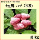 土佐鴨 ハツ(冷凍)約1kg/土佐鴨・土佐ジロー飼育研究会/かも/カモ