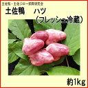 土佐鴨 ハツ (フレッシュ冷蔵)約1kg/土佐鴨・土佐ジロー飼育研究会/かも/カモ