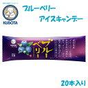 ブルーベリーアイスキャンデー 20本入/久保田食品/サイズ3...